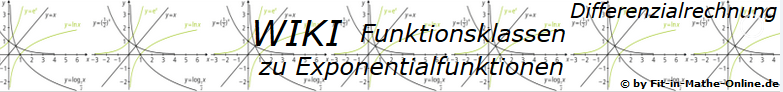 WIKI zu Exponentialfunktionen der Funktionsklassen / © by Fit-in-Mathe-Online.de